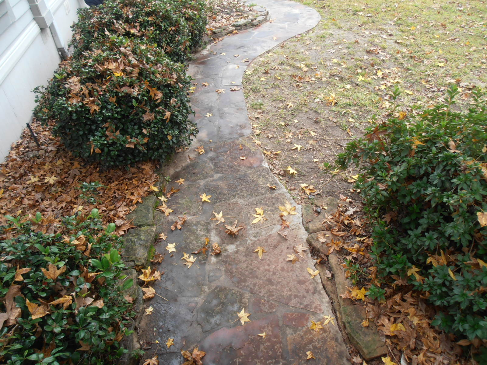 Stone walkway before cleaning